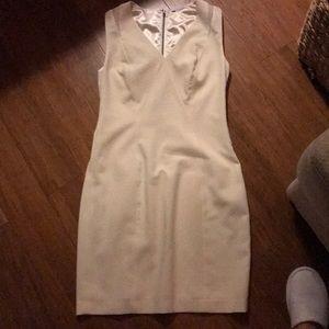 Tahari Cream dress.